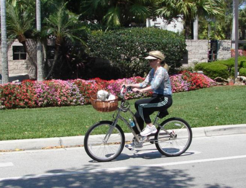 Public Meeting Announcement Bicycle and Pedestrian Master Plan Update